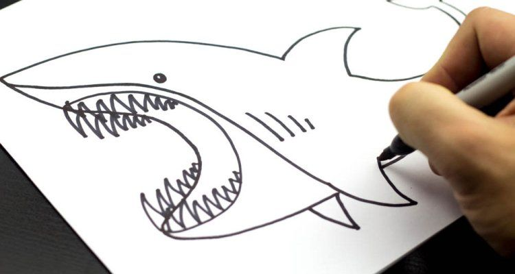 750x400 How To Draw A Shark