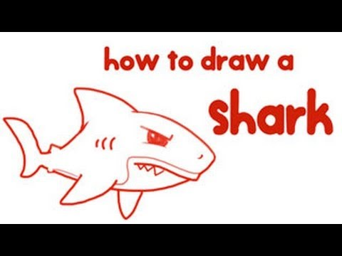 480x360 How To Draw A Shark Step By Step Drawing For Kids Educational