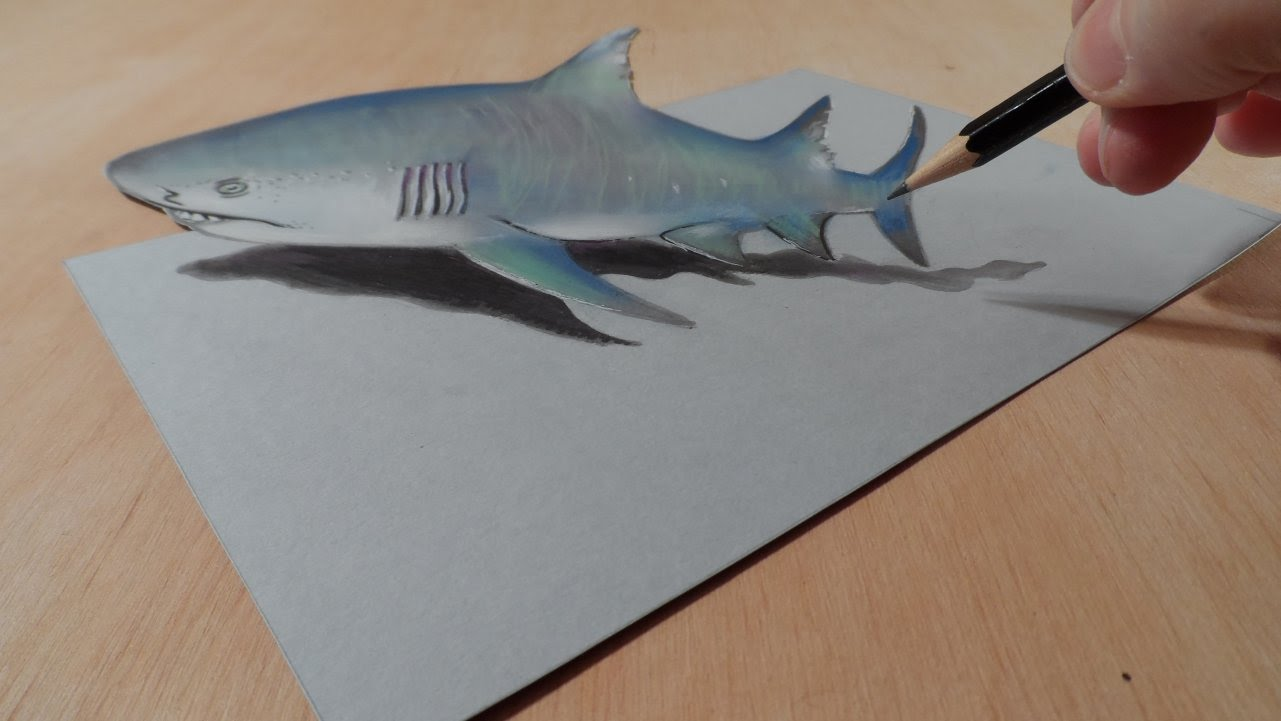 1281x721 Drawing A 3d Gray Shark, Trick Art Amp Amazing Animals