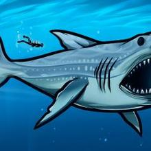 220x220 How To Draw How To Draw Megalodon, Megalodon Shark