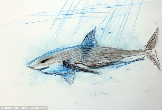 634x432 Artist Jonathan Truss Goes Face To Face With Killer Sharks So