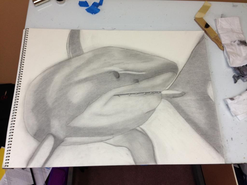 1024x768 Shark Pencil Drawing