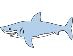 250x192 Cartoon Shark Step By Step Drawing Lesson