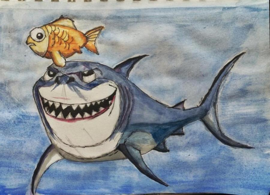 900x653 Shark Nature. Drawings. Pictures. Drawings Ideas For Kids. Easy