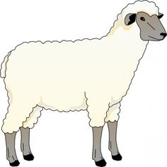 236x235 Sheep Outline Drawing Coloring Page