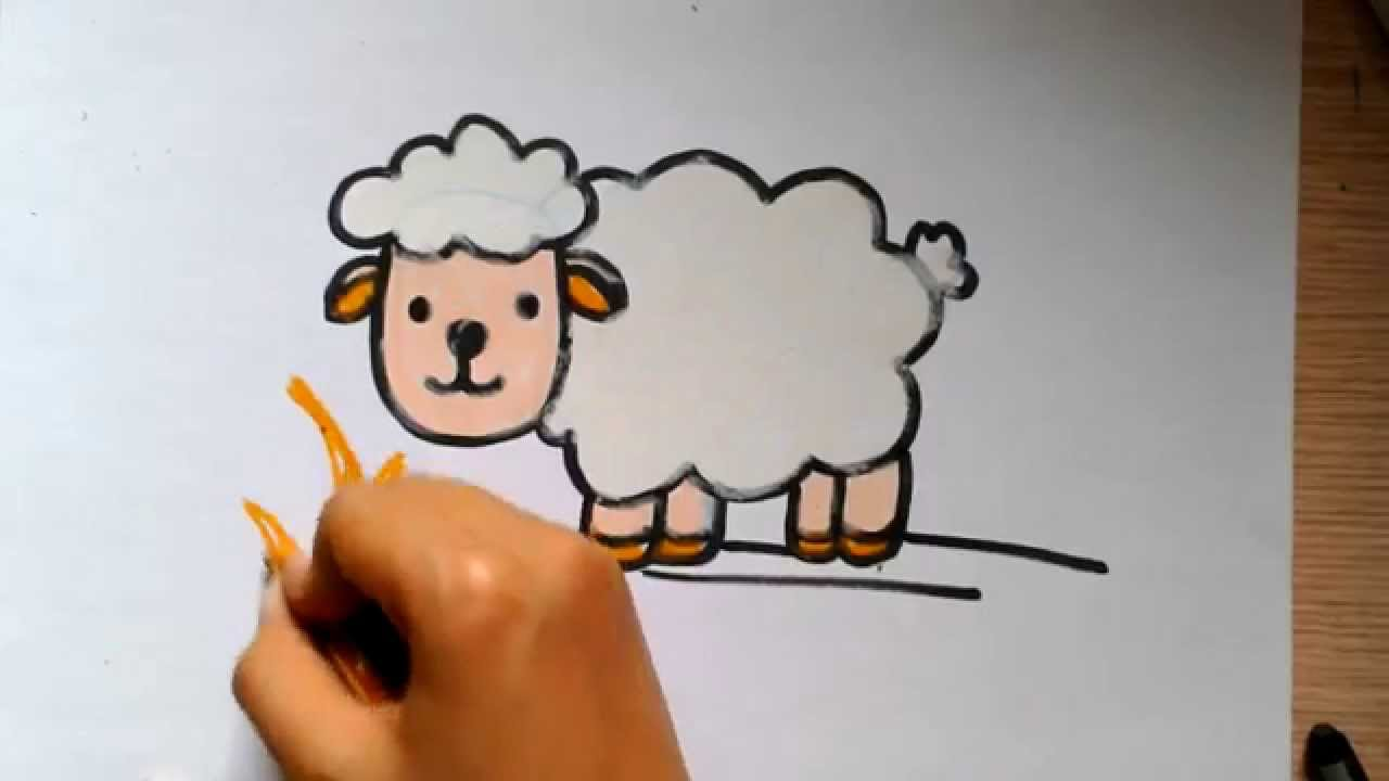 Line Drawing Of Sheep Face : Sheep drawing step by at getdrawings free for personal