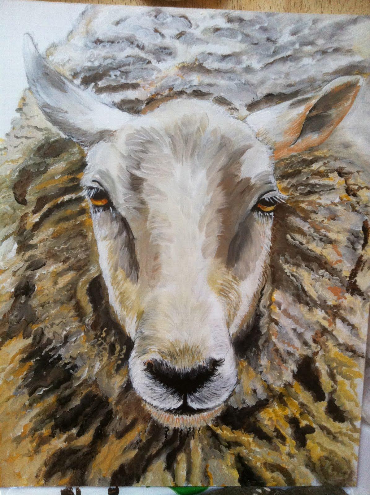 sheep face drawing at getdrawings com free for personal use sheep