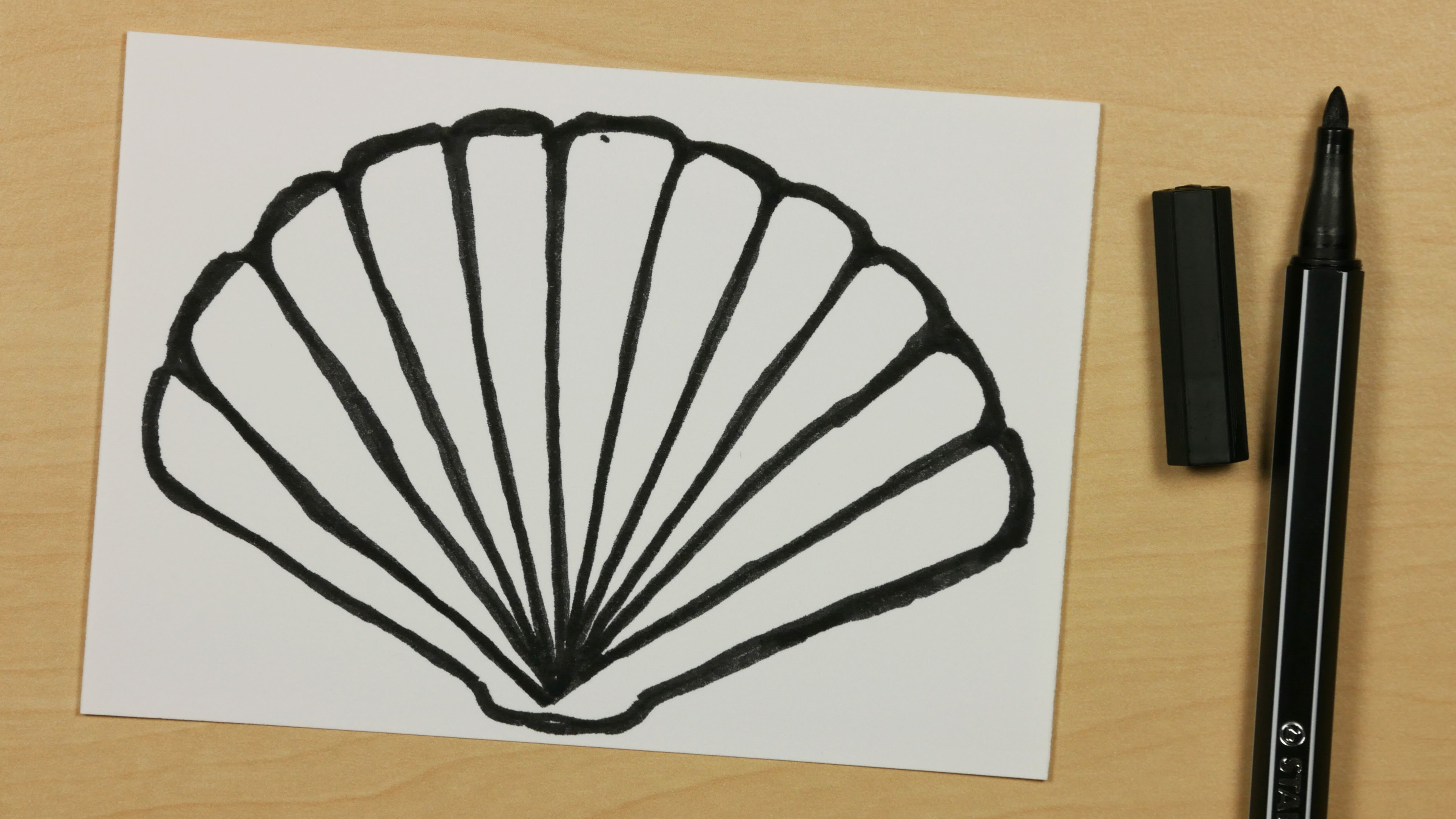 3840x2160 How To Draw A Shell