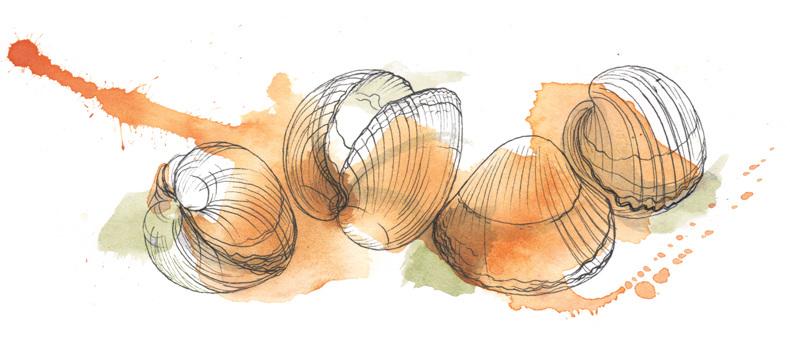 790x348 Fish Amp Shellfish