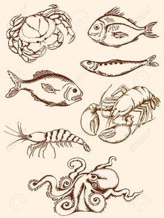 236x314 Hand Drawn Seafood Sketch Vector Set Hand Drawn, Graphics And Logos