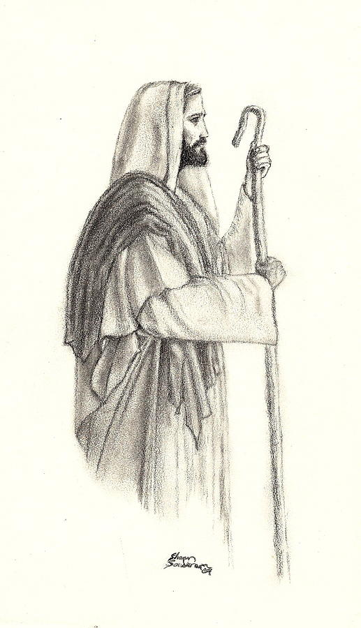 517x900 The Good Shepard Drawing By Shawn Sanderson
