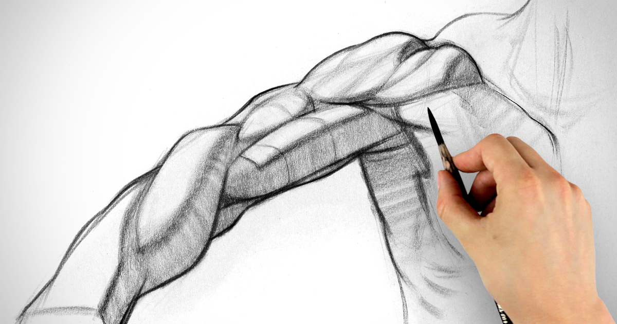 1200x630 How To Draw Arms Biceps Assignment Example Proko