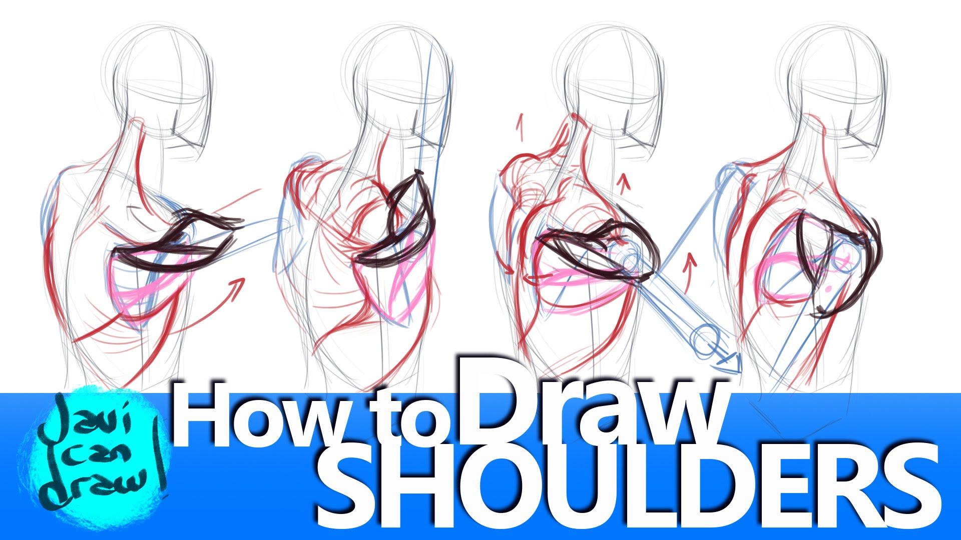 1920x1080 Shoulder Blades Are The Secret For Drawing Shoulders!