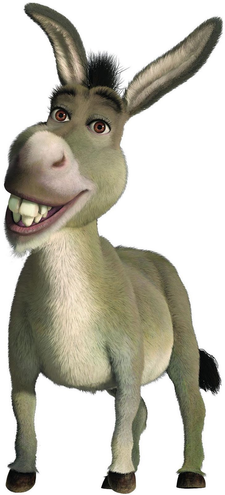 728x1600 He Can Be Donkey From Shrek Things That Remind Me Of My Husband