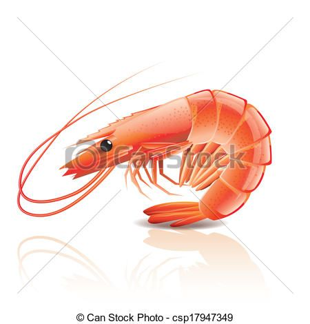 450x470 Cute Shrimp Cartoon Drawing