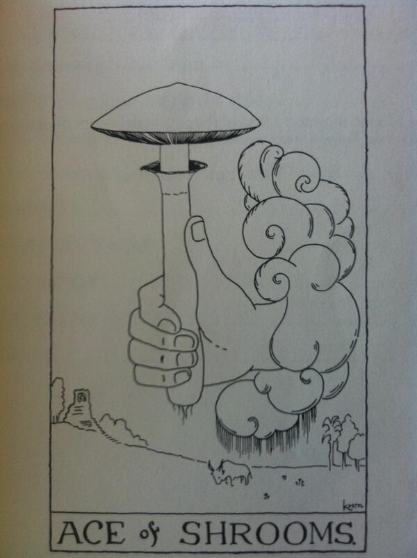 600x803 Magic Mushrooms Shop On Twitter Kathleen Harrison Mckenna Made