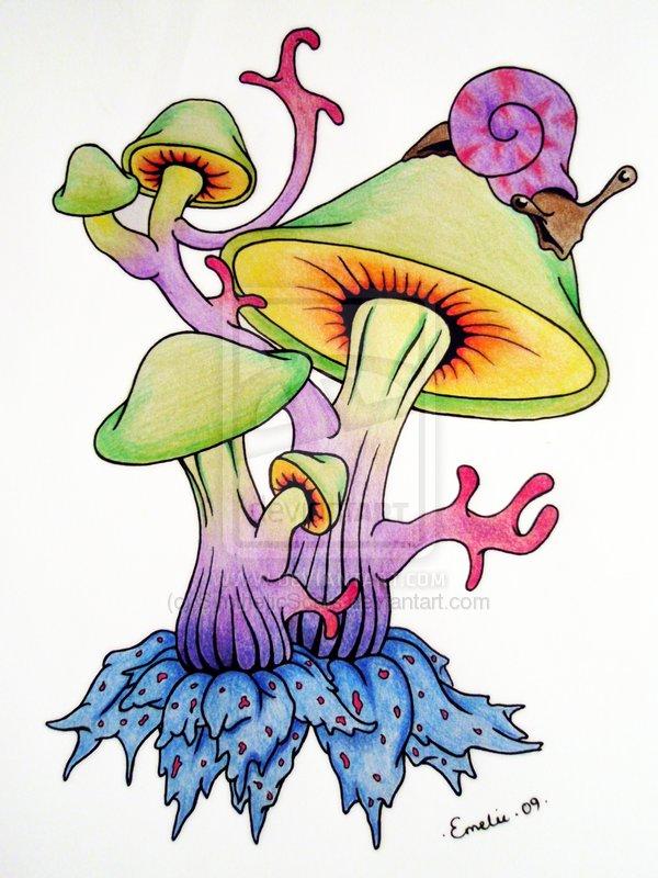 600x800 Shrooms By On @ Mushroom