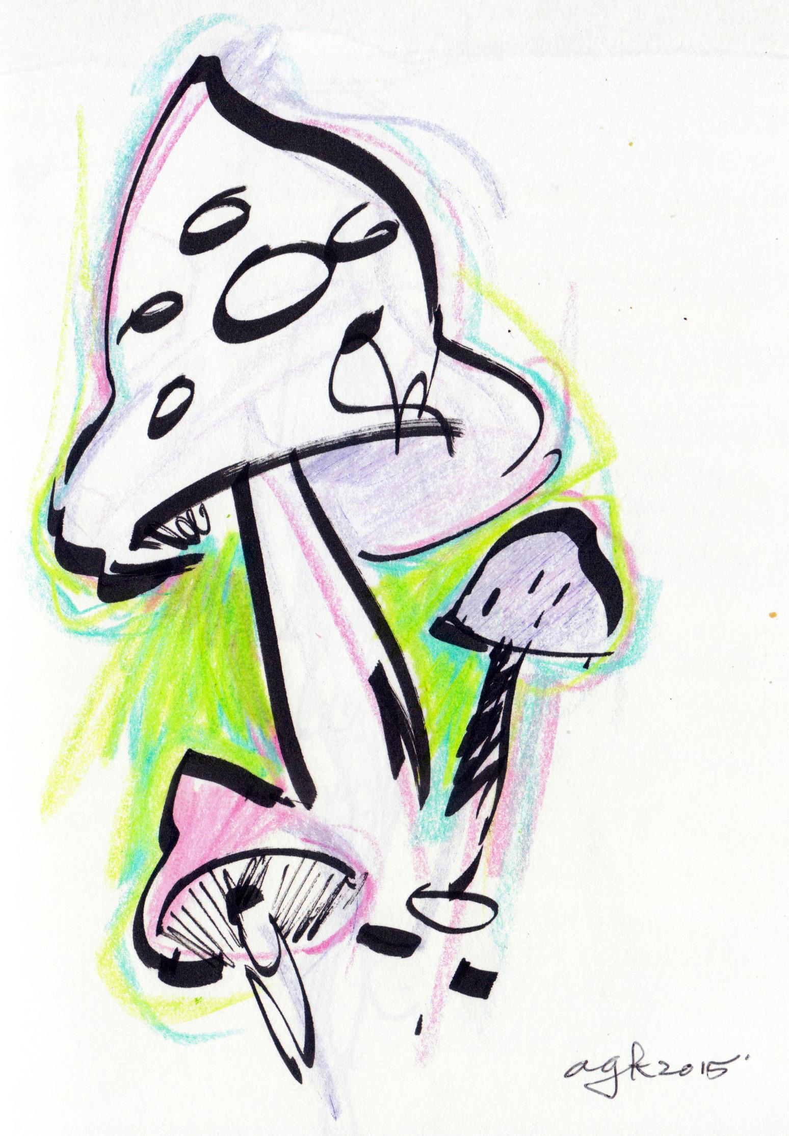 1548x2228 Shrooms Andrew G. Klein Illustrator + Artist