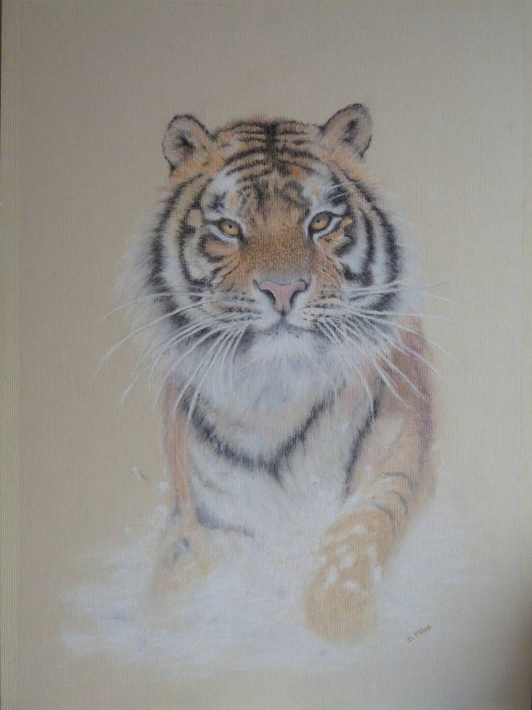 770x1027 Saatchi Art Siberian Tiger Drawing By Diana Milne