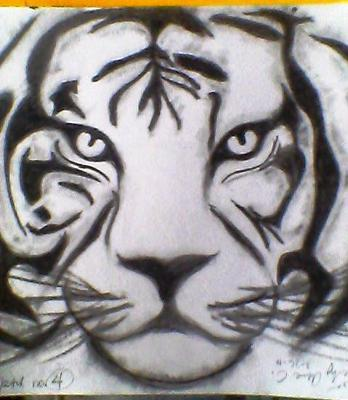 348x400 White Siberian Tiger Drawing 21712868.jpg Cool