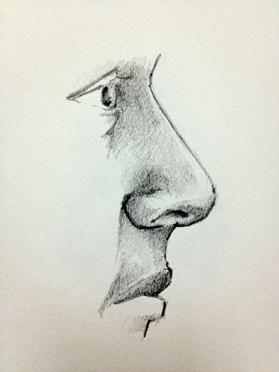 400x533 50 Best Burun Nose Images On How To Draw