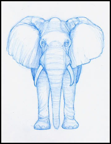 360x466 My Work In Progress Elephant Sketches And Chick Challenge