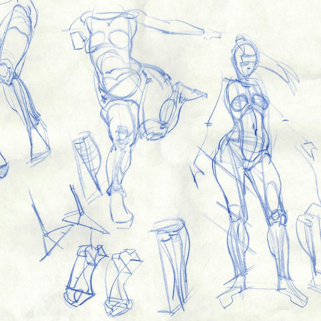 Simple Anatomy Drawing at GetDrawings.com   Free for personal use ...