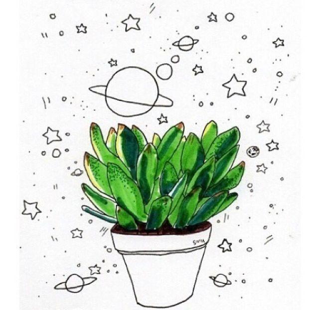 640x623 Cactus A R T Cacti, Artsy And Artsy Fartsy