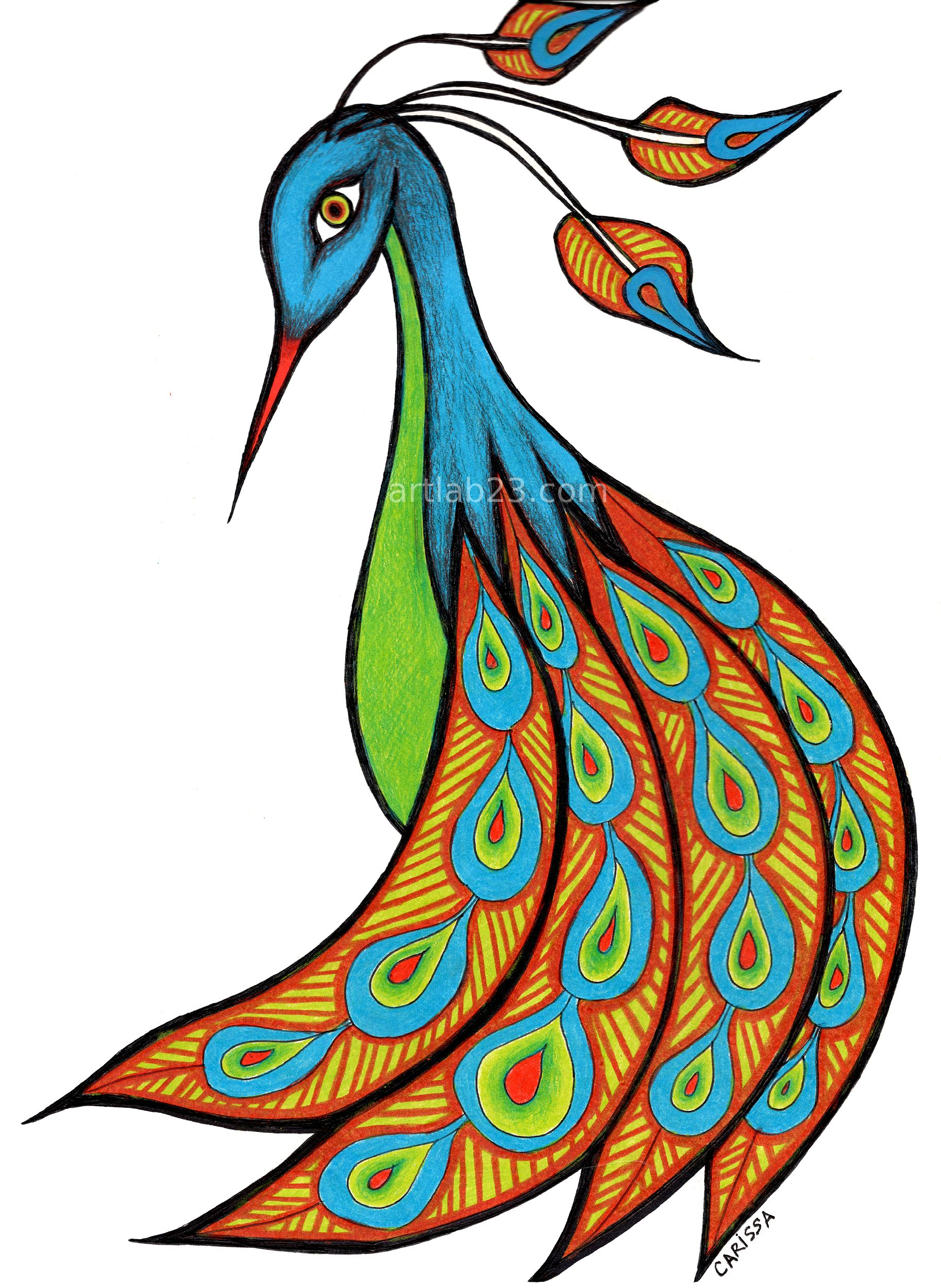 Simple Colorful Peacock Drawing at GetDrawings com | Free for