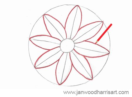 450x330 How To Draw A Daisy
