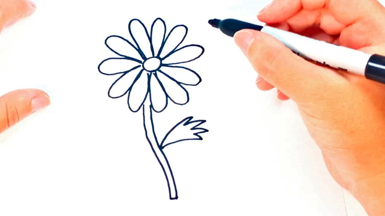 1280x720 How To Draw A Daisy Flower Daisy Flower Easy Draw Tutorial