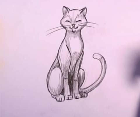 480x402 How To Draw A Cat In Pencil