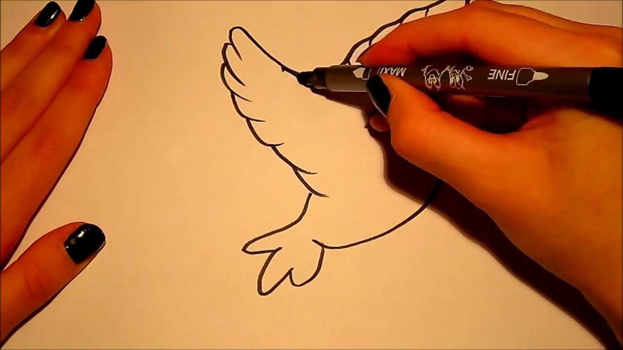 1280x720 How To Draw (For Beginners) A Bird (2) !