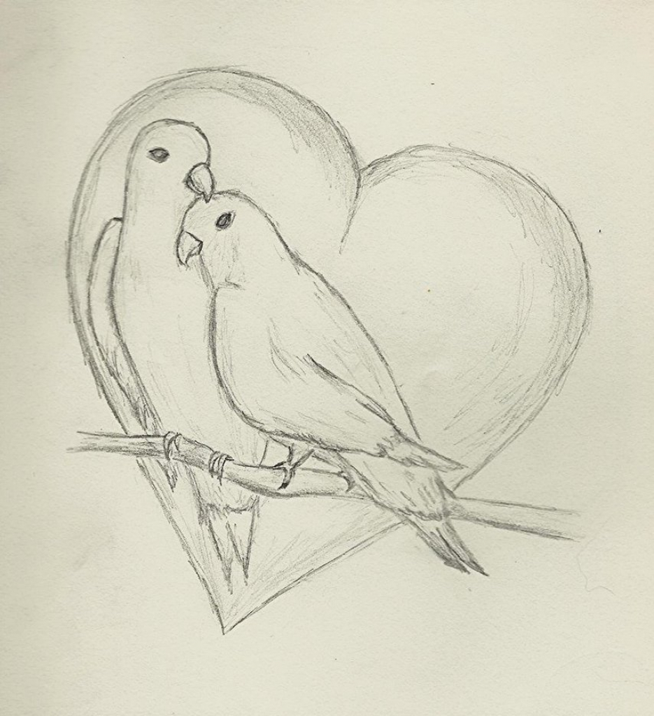 935x1024 Simple Pencil Sketches Of Love Birds Pencil Drawings Of Lovebirds