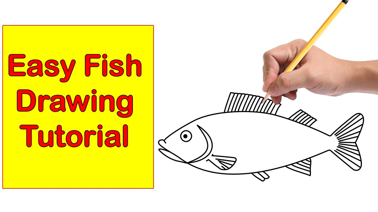 1280x720 Easy To Draw Fish Pictures Simple Drawing Of Fish 205 All New How
