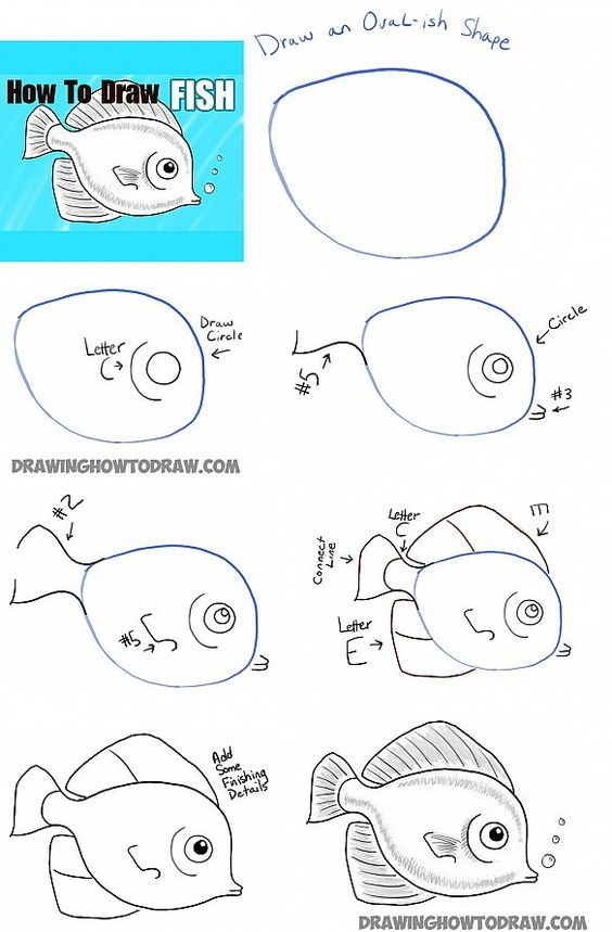 564x859 How To Draw A Fish Step By Step Disegni Da Fare Con I Bambini