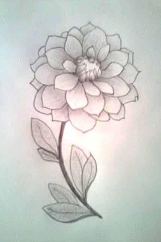 640x960 Cute But Simple Flower Drawing (Just 34 Drawn On Canvas, Up Close