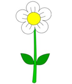 230x269 Pictures Simple Drawing Photos Flower,