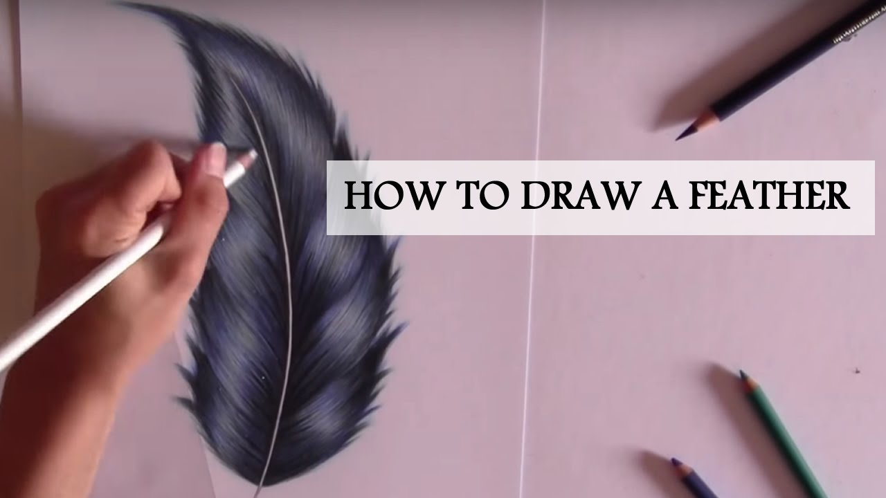 1280x720 HOW TO DRAW A SIMPLE FEATHER