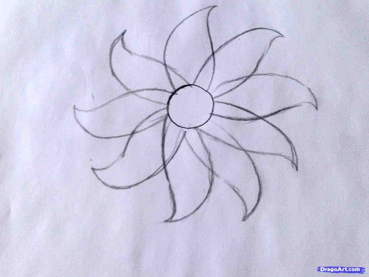 1416x1062 Flower Drawings Step By Step Easy Butterfly Pencil Drawings You