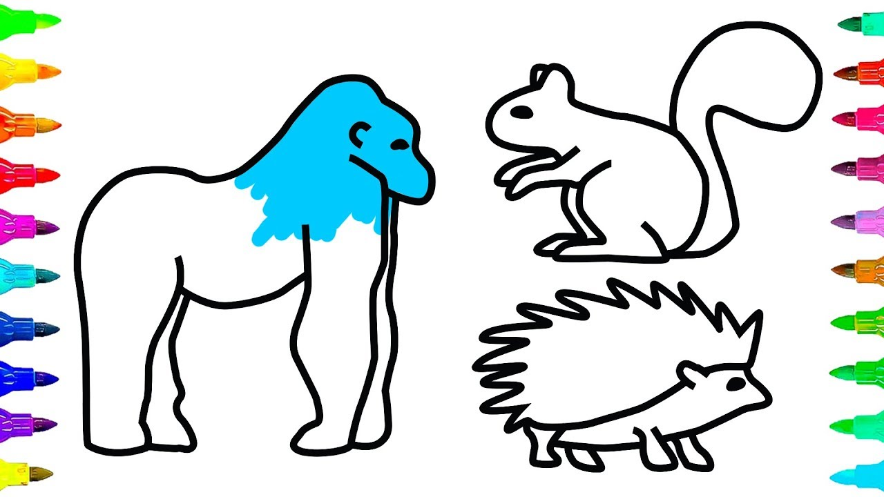 1280x720 How To Draw And Color Animals Gorilla Squirrel Porcupine