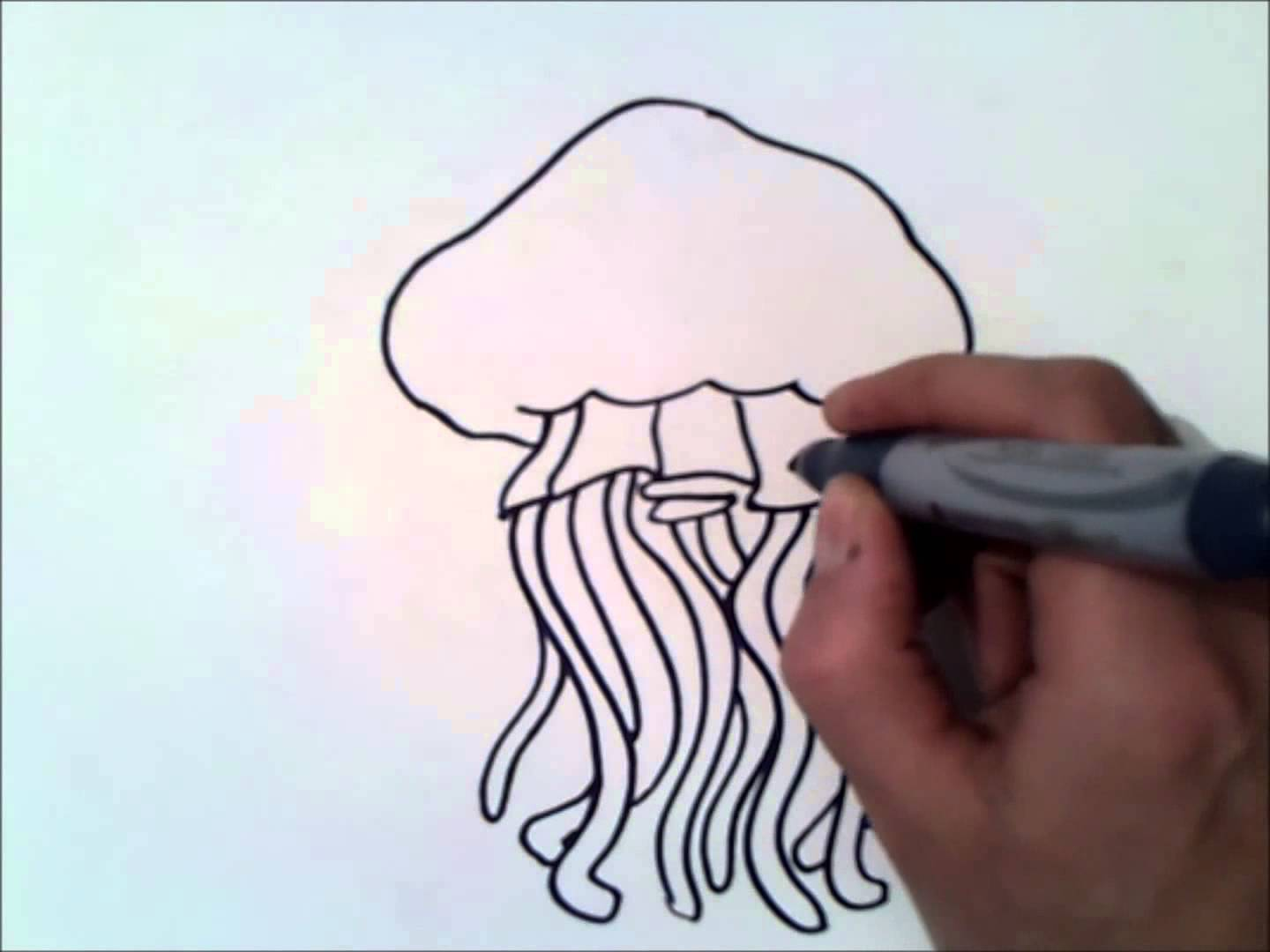 Line Drawing Jellyfish : Simple jellyfish drawing at getdrawings free for personal