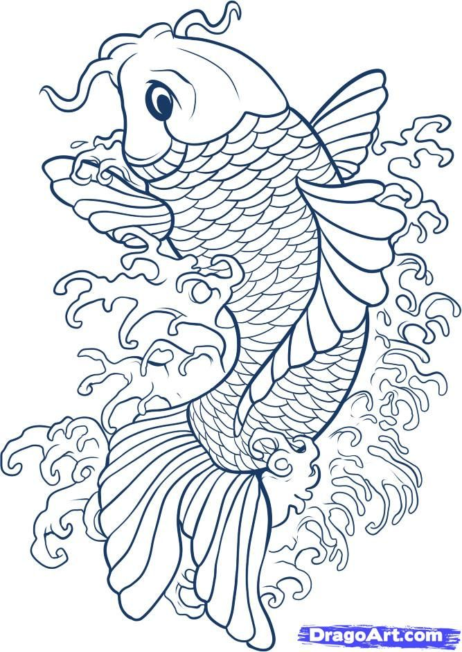 667x941 Drawing Koi Fish Connect To Study Of Japan And Japanese Gardens