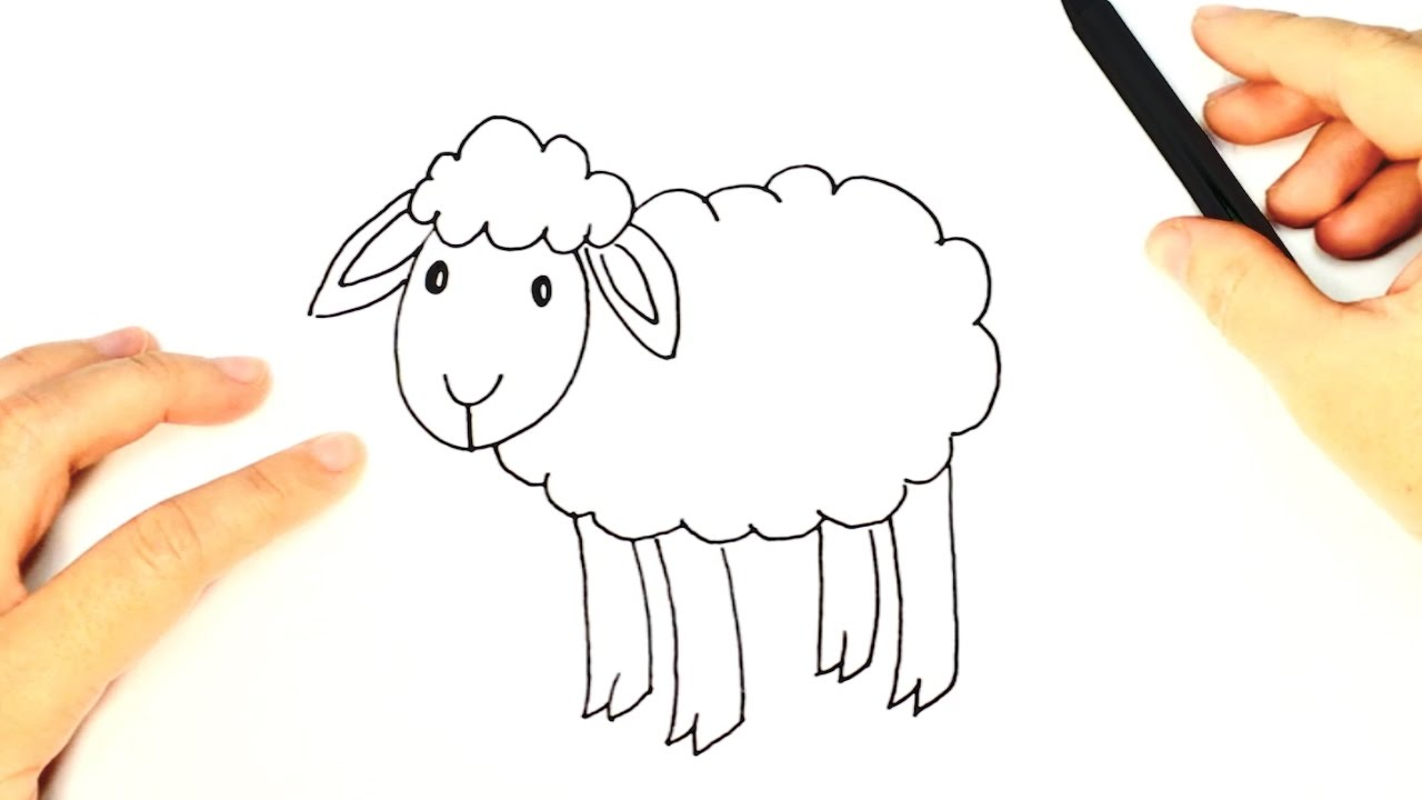 1280x720 How To Draw A Sheep For Kids Sheep Easy Draw Tutorial