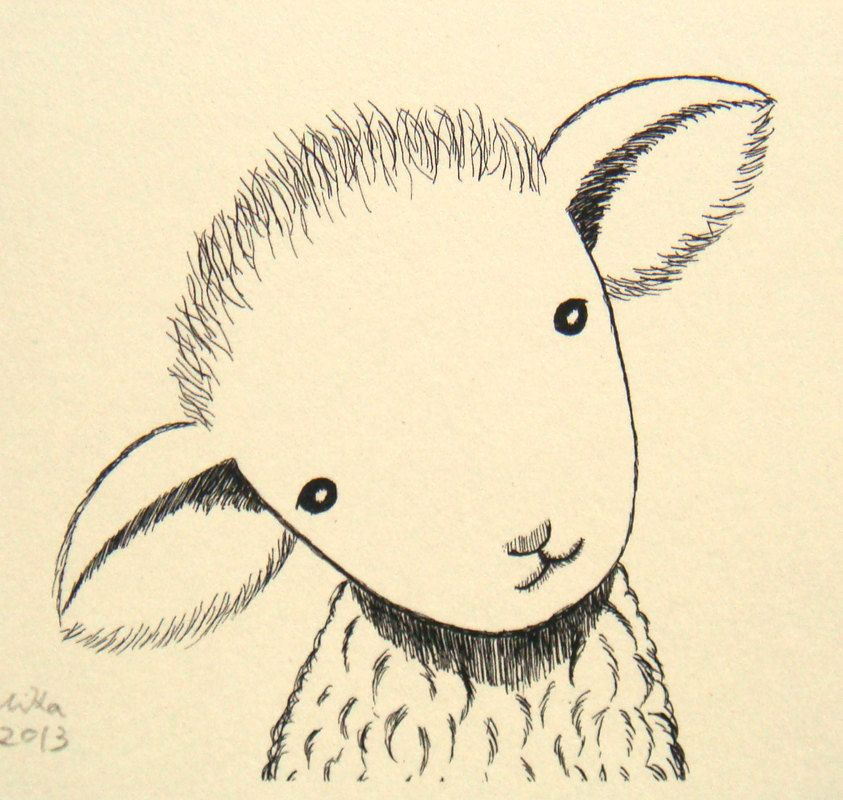 843x800 Nursery Art Print Lamb Sheep Ink Drawing Cute Lamb Illustration