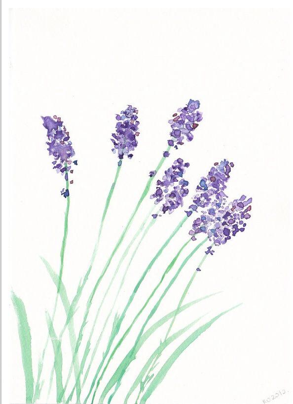594x818 Lavender Clay N Craft Lavender, Watercolor