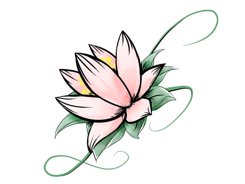 1024x768 Lotus Flower Drawing Pictures Simple Lotus Drawing Simple Lotus