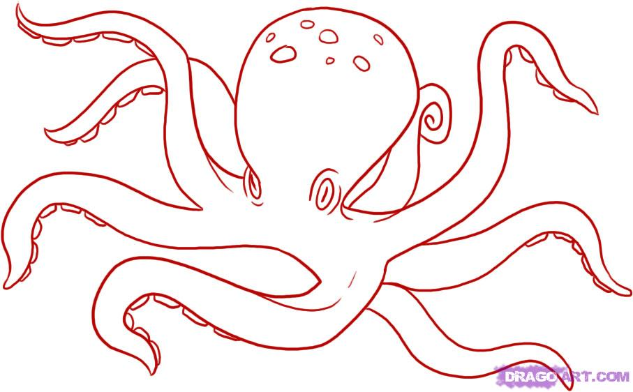907x562 How To Draw Octopus Drawing Tutorials Amp Drawing Amp How To Draw