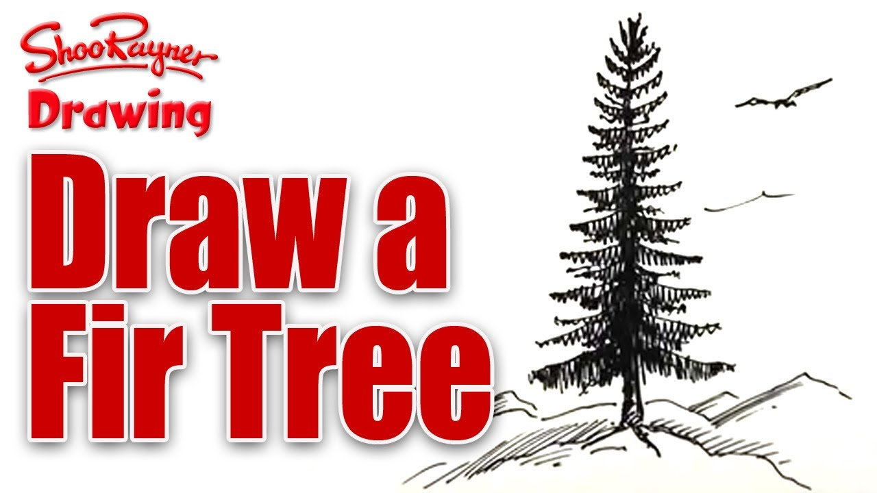 1280x720 Learn To Draw A Fir Tree