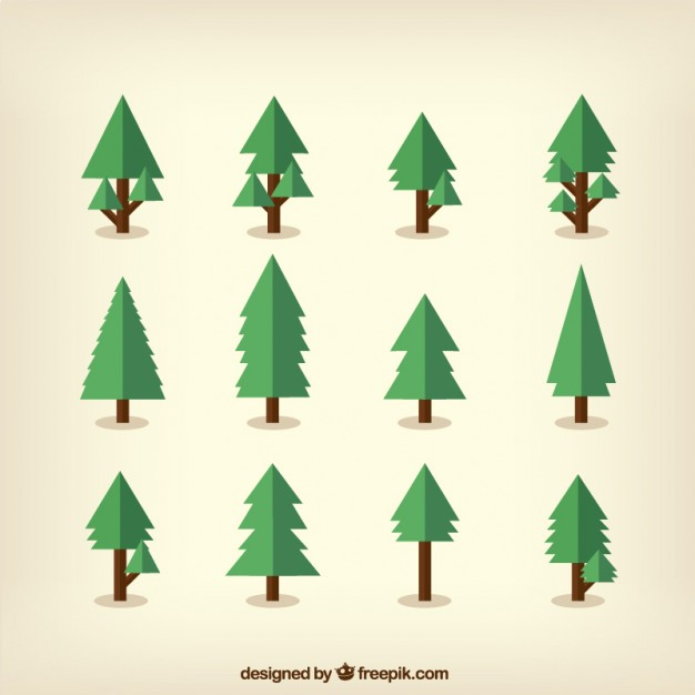 626x626 Pine Vectors, Photos And Psd Files Free Download